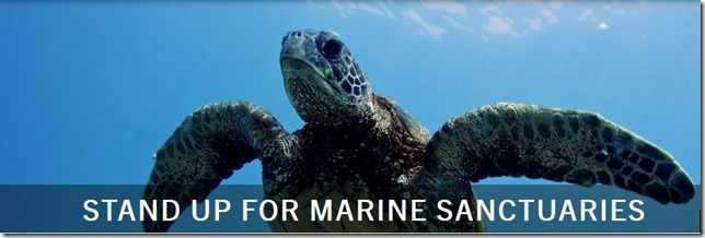 Stand Up For Marine Sanctuaries